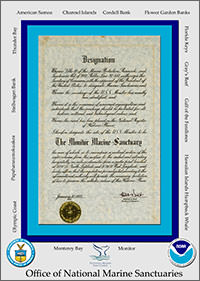 designation document