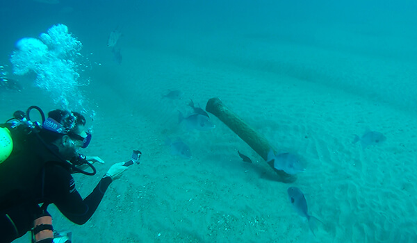 A diver inspects a pipe partially burried in the sand