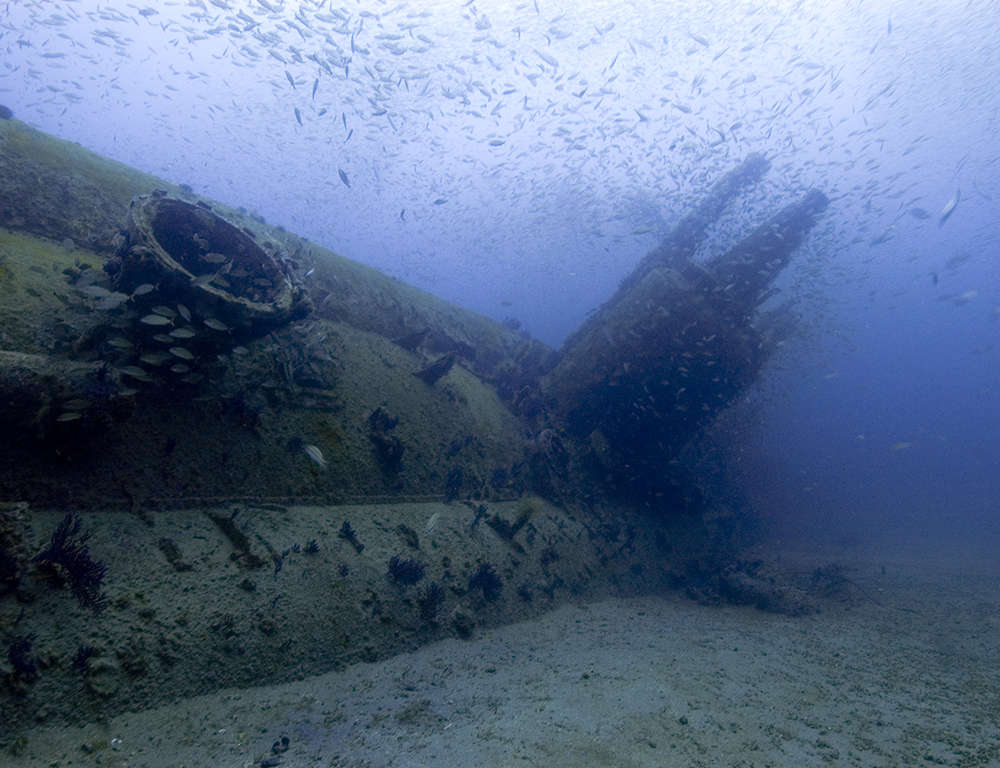 an image of an old sunkin U-boat